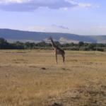 Maxim Lando Visits Africa